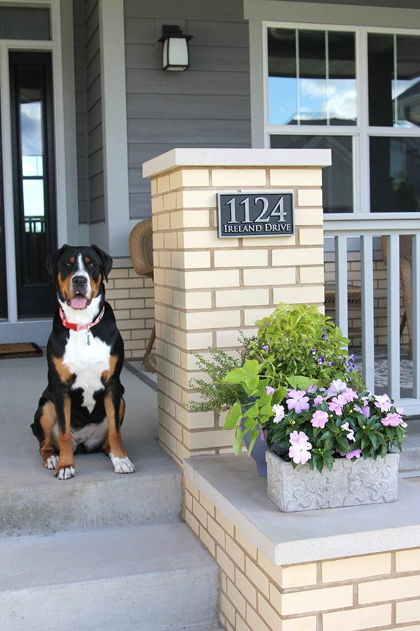 Thanks for all the help getting the sign right! We think it really adds a beautiful touch to our porch. - Petra 8/2015 (81) (Sign is pictured with the awesome dog Maud)