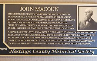 """12""""H x 24""""W Cast Bronze Plaque with Etched Insert"""