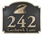 Goshawk Bronze Raised